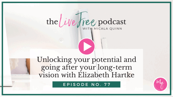 77: Unlocking your potential and going after your long-term vision with Elizabeth Hartke