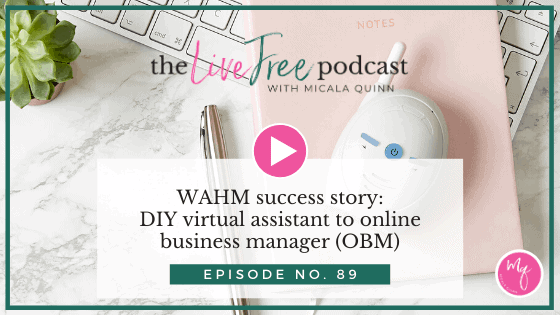 89: WAHM success story: DIY virtual assistant to online business manager (OBM)